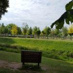 Luthergarten Blick Richtung Süden